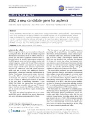 Vol 9: ZEB2, a new candidate gene for asplenia.