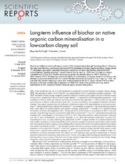 Vol 4: Long-term influence of biochar on native organic carbon mineralisation in a low-carbon clayey soil.