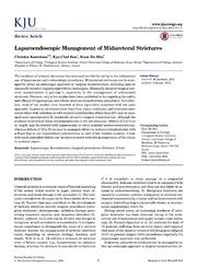 Vol 55: Laparoendoscopic Management of Midureteral Strictures.