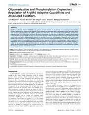 Vol 9: Oligomerization and Phosphorylation Dependent Regulation of ArgBP2 Adaptive Capabilities and Associated Functions.