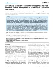 Vol 9: Diversifying Selection on the Thrombospondin-Related Adhesive Protein (TRAP) Gene of Plasmodium falciparum in Thailand.