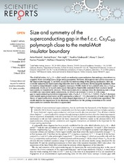 Vol 4: Size and symmetry of the superconducting gap in the f.c.c. Cs3C60 polymorph close to the metal-Mott insulator boundary.