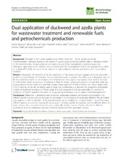 Vol 7: Dual application of duckweed and azolla plants for wastewater treatment and renewable fuels and petrochemicals production.