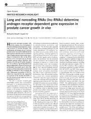Vol 16: Long and noncoding RNAs lnc-RNAs determine androgen receptor dependent gene expression in prostate cancer growth in vivo.
