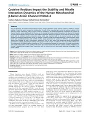 Vol 9: Cysteine Residues Impact the Stability and Micelle Interaction Dynamics of the Human Mitochondrial -Barrel Anion Channel hVDAC-2.