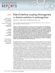 Vol 4: Role of interface coupling inhomogeneity in domain evolution in exchange bias.