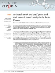 Vol 4: Archaeal amoA and ureC genes and their transcriptional activity in the Arctic Ocean.