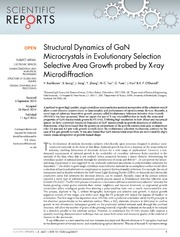 Vol 4: Structural Dynamics of GaN Microcrystals in Evolutionary Selection Selective Area Growth probed by X-ray Microdiffraction.