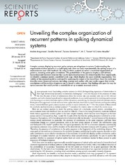 Vol 4: Unveiling the complex organization of recurrent patterns in spiking dynamical systems.