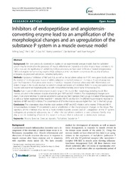 Vol 15: Inhibitors of endopeptidase and angiotensin-converting enzyme lead to an amplification of the morphological changes and an upregulation of the substance P system in a muscle overuse model.