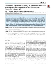 Vol 9: Differential Expression Profiling of Spleen MicroRNAs in Response to Two Distinct Type II Interferons in Tetraodon nigroviridis.
