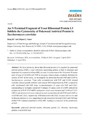 Vol 6: An N-Terminal Fragment of Yeast Ribosomal Protein L3 Inhibits the Cytotoxicity of Pokeweed Antiviral Protein in Saccharomyces cerevisiae.