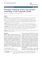 Vol 14: Phenotypic integration of brain size and head morphology in Lake Tanganyika Cichlids.
