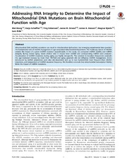 Vol 9: Addressing RNA Integrity to Determine the Impact of Mitochondrial DNA Mutations on Brain Mitochondrial Function with Age.
