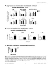 Vol 9: AAV-Dominant Negative Tumor Necrosis Factor (DN-TNF) Gene Transfer to the Striatum Does Not Rescue Medium Spiny Neurons in the YAC128 Mouse Model of Huntington-s Disease.
