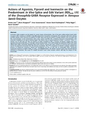 Vol 9: Actions of Agonists, Fipronil and Ivermectin on the Predominant In Vivo Splice and Edit Variant (RDLbd, I-V) of the Drosophila GABA Receptor Expressed in Xenopus laevis Oocytes.