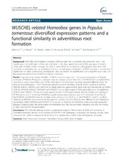 Vol 15: WUSCHEL-related Homeobox genes in Populus tomentosa: diversified expression patterns and a functional similarity in adventitious root formation.