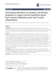 Vol 10: Contrasting alterations to synaptic and intrinsic properties in upper-cervical superficial dorsal horn neurons following acute neck muscle inflammation.