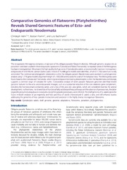 Vol 6: Comparative Genomics of Flatworms (Platyhelminthes) Reveals Shared Genomic Features of Ecto- and Endoparastic Neodermata.