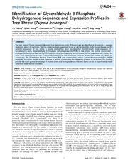 Vol 9: Identification of Glyceraldehyde 3-Phosphate Dehydrogenase Sequence and Expression Profiles in Tree Shrew Tupaia belangeri.
