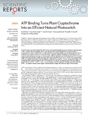 Vol 4: ATP Binding Turns Plant Cryptochrome Into an Efficient Natural Photoswitch.