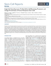 Vol 2: Single-Cell Gene Expression Profiles Define Self-Renewing, Pluripotent, and Lineage Primed States of Human Pluripotent Stem Cells.