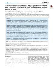 Vol 9: Artemisia scoparia Enhances Adipocyte Development and Endocrine Function In Vitro and Enhances Insulin Action In Vivo.