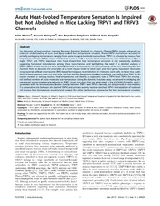Vol 9: Acute Heat-Evoked Temperature Sensation Is Impaired but Not Abolished in Mice Lacking TRPV1 and TRPV3 Channels.