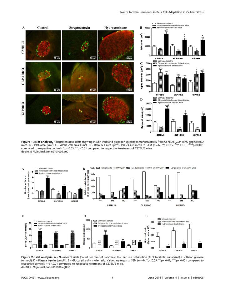 Vol 9: Role of Endogenous GLP-1 and GIP in Beta Cell Compensatory Responses to Insulin Resistance and Cellular Stress.