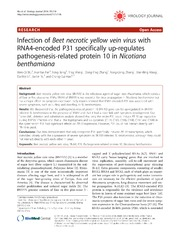 Vol 11: Infection of Beet necrotic yellow vein virus with RNA4-encoded P31 specifically up-regulates pathogenesis-related protein 10 in Nicotiana benthamiana.