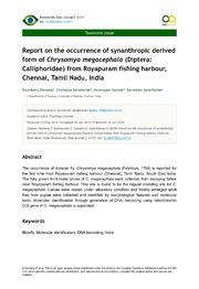 Report on the occurrence of synanthropic derived form of Chrysomyamegacephala Diptera: Calliphoridae from Royapuram fishing harbour, Chennai, Tamil Nadu, India.