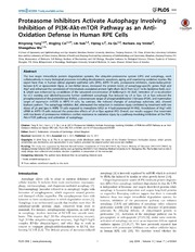 Vol 9: Proteasome Inhibitors Activate Autophagy Involving Inhibition of PI3K-Akt-mTOR Pathway as an Anti-Oxidation Defense in Human RPE Cells.