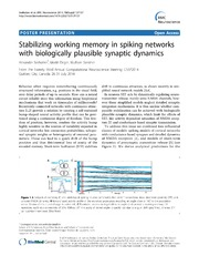 Vol 15: Stabilizing working memory in spiking networks with biologically plausible synaptic dynamics.