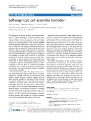 Vol 15: Self-organized cell assembly formation.