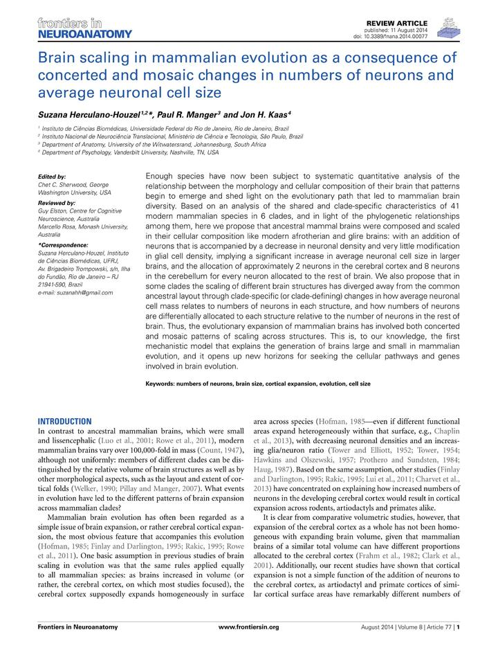Vol 8: Brain scaling in mammalian evolution as a consequence of concerted and mosaic changes in numbers of neurons and average neuronal cell size.