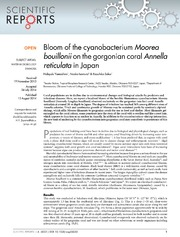 Vol 4: Bloom of the cyanobacterium Moorea bouillonii on the gorgonian coral Annella reticulata in Japan.