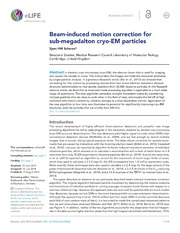 Vol 3: Beam-induced motion correction for sub-megadalton cryo-EM particles.