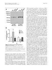 Vol 10: -arrestin-2-biased agonism of delta opioid receptors sensitizes transient receptor potential vanilloid type 1 (TRPV1) in primary sensory neurons.