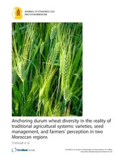 Vol 10: Anchoring durum wheat diversity in the reality of traditional agricultural systems: varieties, seed management, and farmers- perception in two Moroccan regions.