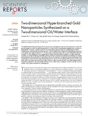 Vol 4: Two-dimensional Hyper-branched Gold Nanoparticles Synthesized on a Two-dimensional Oil-Water Interface.