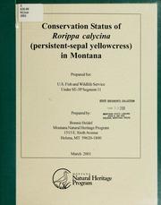 Conservation status of Rorippa calycina (persistent-sepal yellowcress) in Montana, 2001