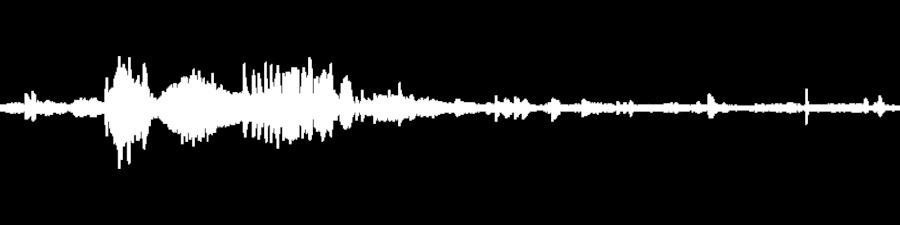 String Cheese Incident Live at Warfield on 2001-03-10 : Free