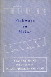 A history of the white tailed deer in maine 1963 maine for Maine fish and game