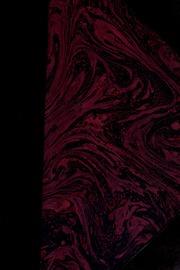 Un problème d-art : l-école portugaise, créatrice des grandes écoles