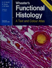 Wheaters functional histology a text and colour atlas burkitt wheaters functional histology a text and colour atlas burkitt h george free download borrow and streaming internet archive fandeluxe Gallery